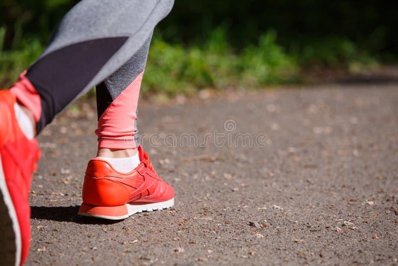 Os pés novos do caminhante da mulher da aptidão na floresta arrastam fotos de stock
