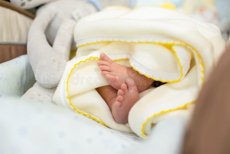 Os pés recém-nascidos minúsculos do bebê, os dedos do pé pequenos ondularam acima, cuidados médicos, Pediatri imagem de stock