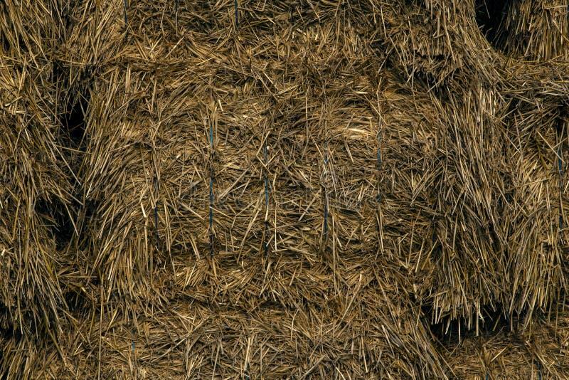 Os pacotes da palha precisaram no estábulo para rebanhos animais no inverno imagens de stock