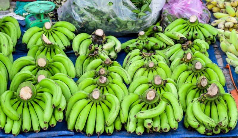 Os pacotes de bananas verdes encontram-se nas fileiras imagem de stock royalty free