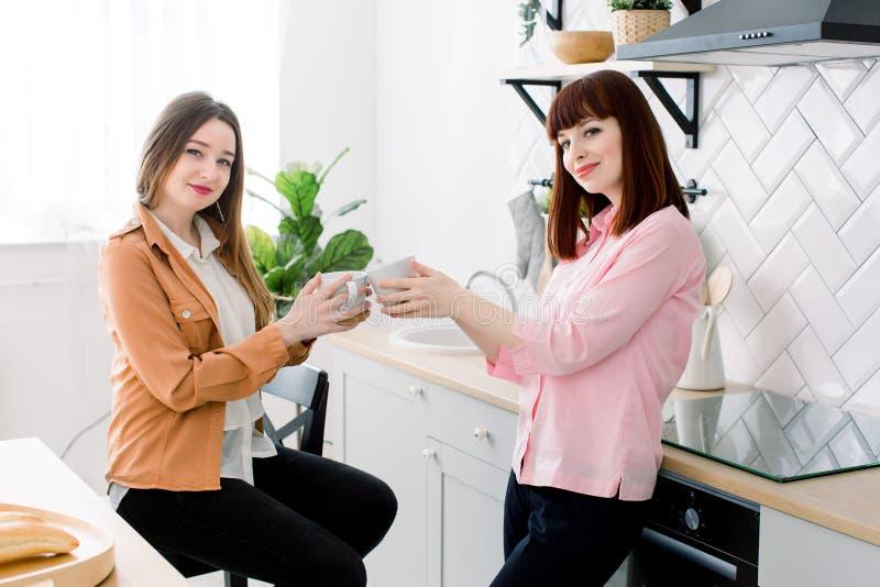 Os pares de meninas lésbicas apreciam o café em casa que toma sobre algo Duas mulheres bonitas adultas novas bebem o chá em moder imagem de stock royalty free