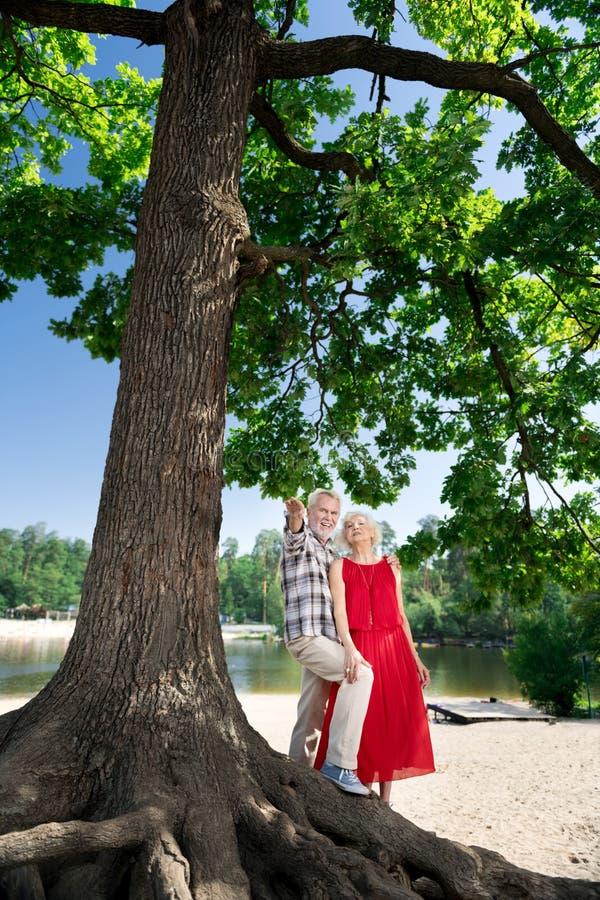Os pares envelhecidos que estão perto da árvore grande perto da cidade acolhedor encalham fotografia de stock royalty free