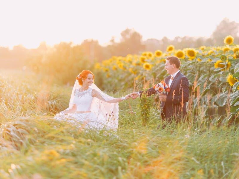 Os pares felizes do recém-casado em seu dia do casamento no girassol colocam no por do sol fotografia de stock