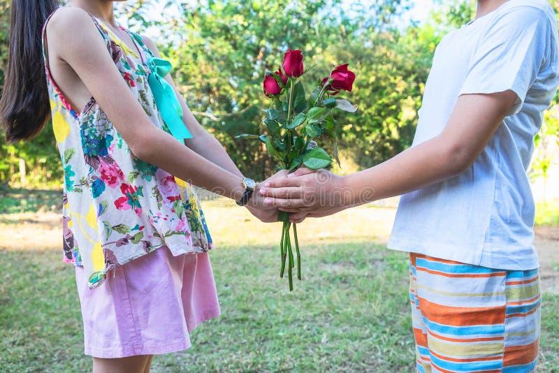 Os pares felizes para o dia de Valentim acoplam-se com rosa vermelha fotos de stock royalty free