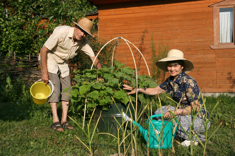 Os pares idosos em um jardim imagens de stock royalty free