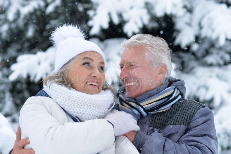 Os pares maduros têm o divertimento fora fotografia de stock royalty free