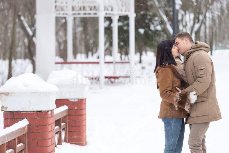Os pares novos felizes no parque do inverno amam e beijam fotografia de stock royalty free