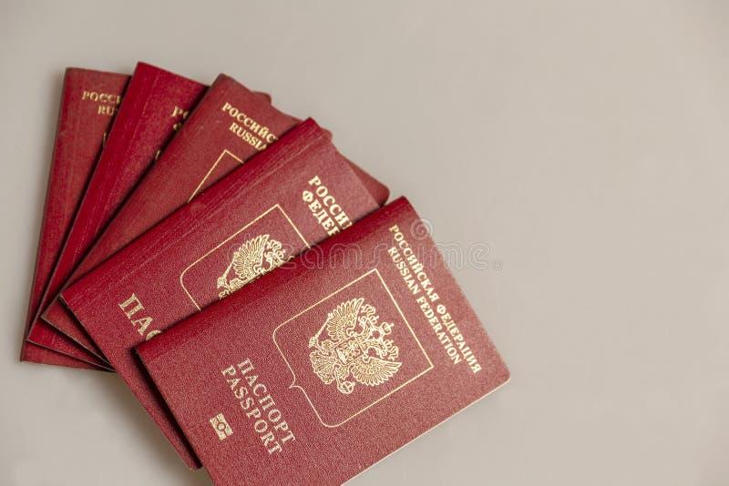 Os passaportes estrangeiros do russo ventilam no fundo cinzento foto de stock royalty free
