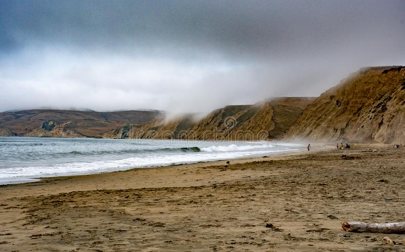 Os patos encalham, litoral de Reyes National do ponto fotografia de stock