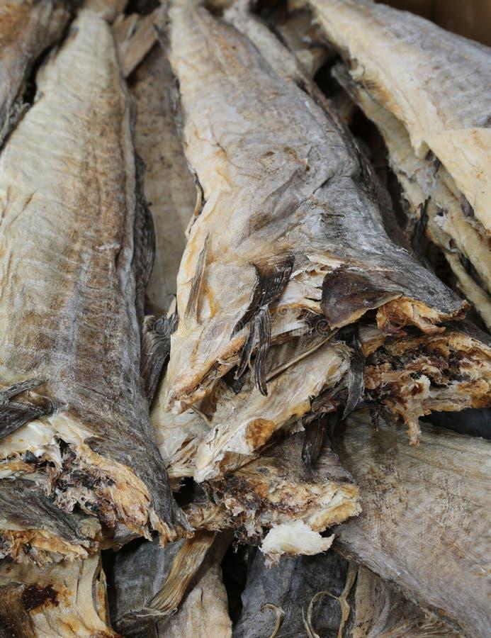 Os peixes de bacalhau fumado secam para a venda no mercado fotografia de stock