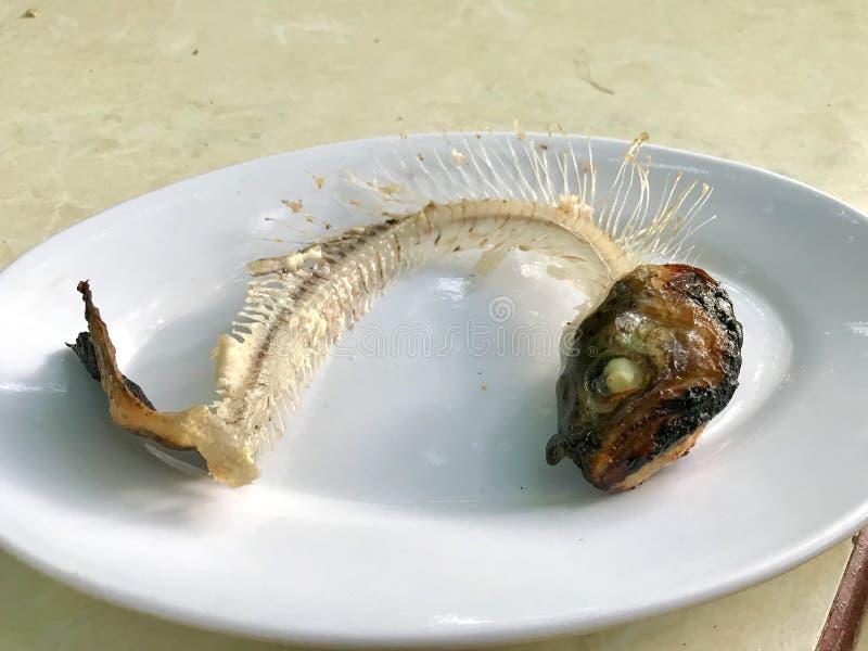 Os peixes de esqueleto desossam na placa/marisco restante comido foto de stock royalty free