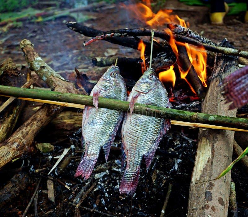 Os peixes frescos grelharam sobre a fogueira, vida local, Laos imagens de stock