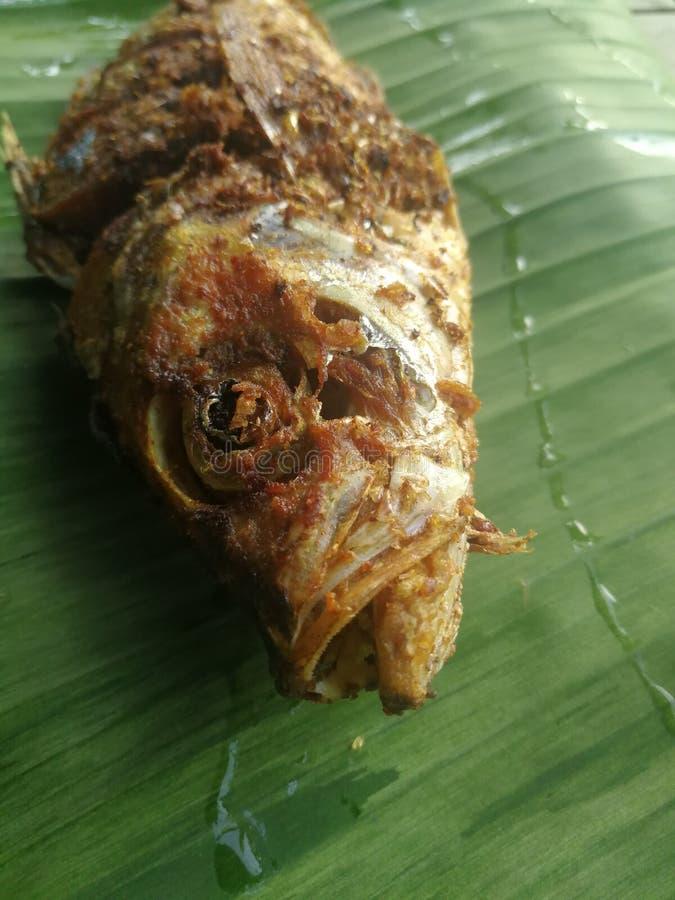 Os peixes fritados temperaram em uma folha verde da banana imagem de stock