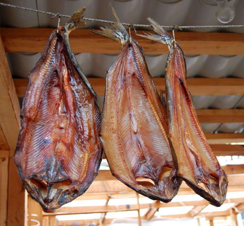 Os peixes fumados imagem de stock royalty free