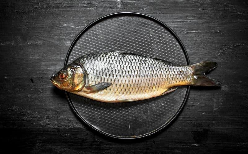 Os peixes na placa imagem de stock