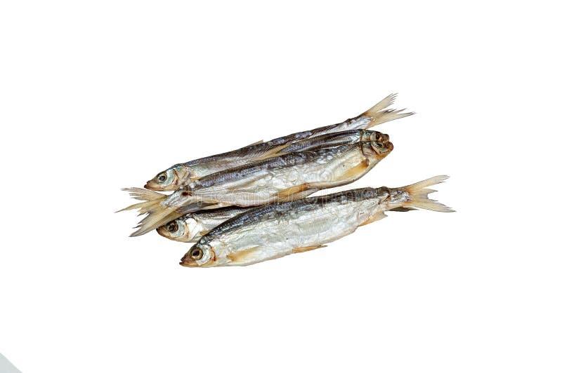 Os peixes Ryapushka secaram fotografia de stock