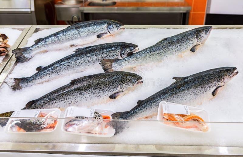 Os peixes Salmon são congelados com gelo para a venda no supermercado imagens de stock