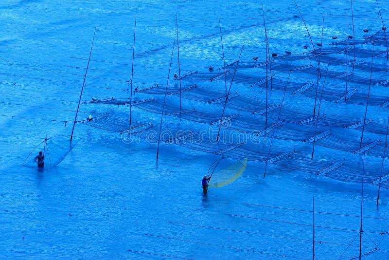 Os pescadores aproximam a exploração agrícola da alga imagem de stock