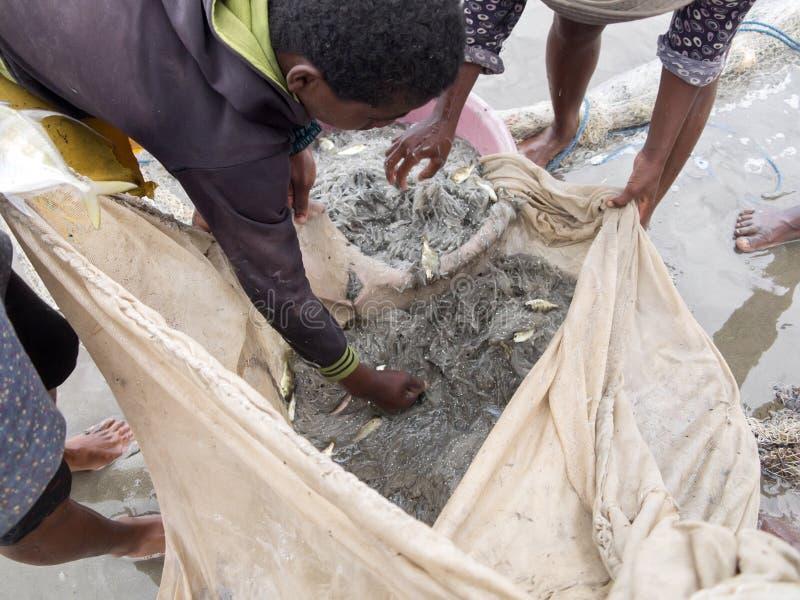 Os pescadores nativos puxam as redes, Antsiranana, Madagáscar foto de stock royalty free