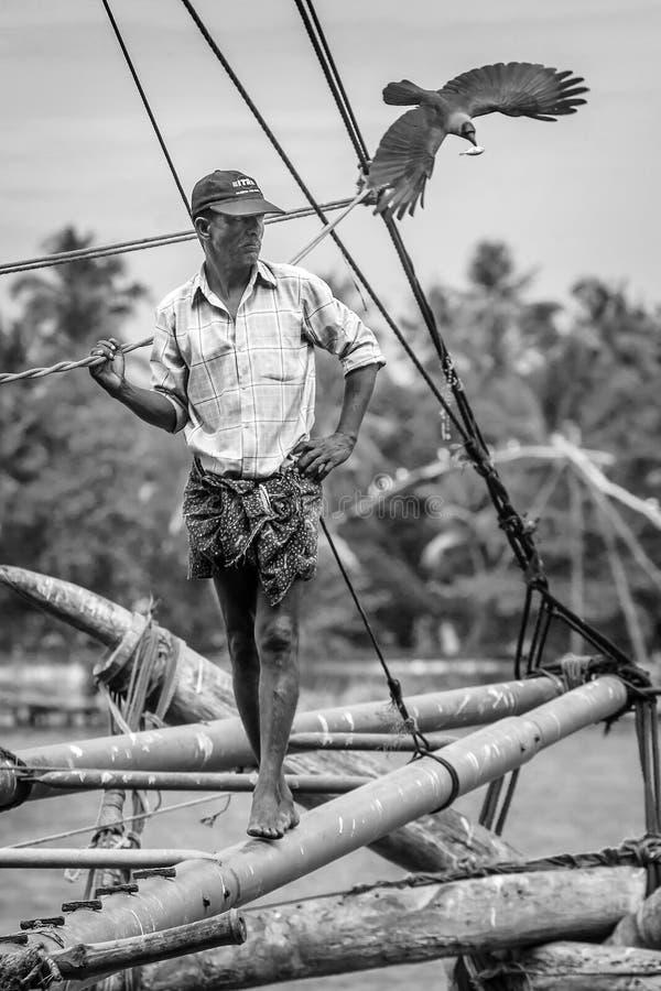 Os pescadores operam uma rede de pesca chinesa imagem de stock
