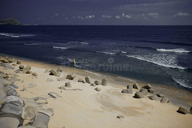 Os pescadores travaram um peixe na praia fotos de stock royalty free