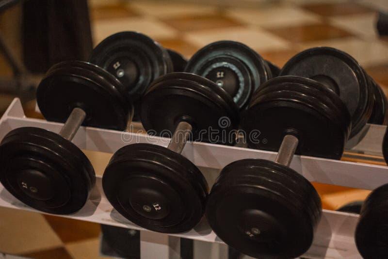 Os pesos do metal da m?o encontram-se junto em seguido na cremalheira no close-up do gym Ferramentas do treinamento foto de stock royalty free