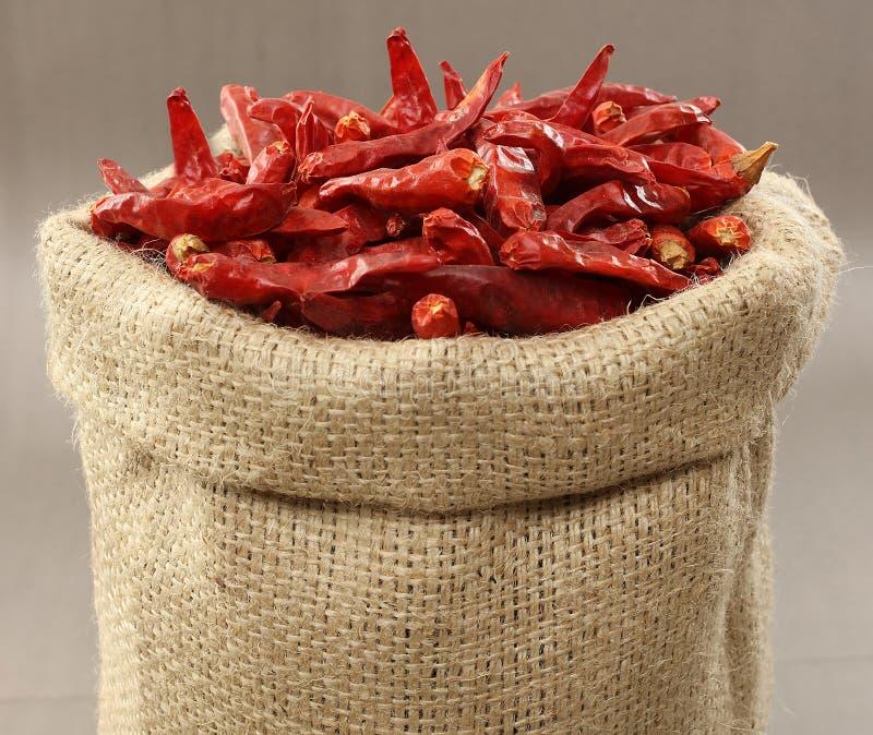 Os pimentões secos vermelhos ensacam foto de stock