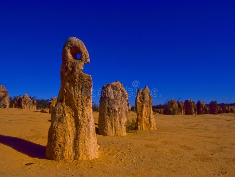 Os pináculos na Austrália Ocidental fotos de stock