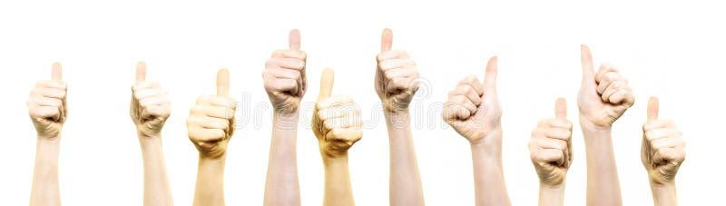 Os polegares levantam o gesto fotos de stock royalty free