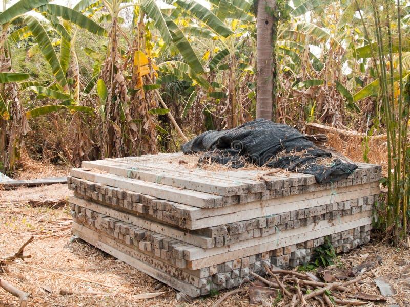 Os polos concretos empilharam a pilha na floresta fotografia de stock