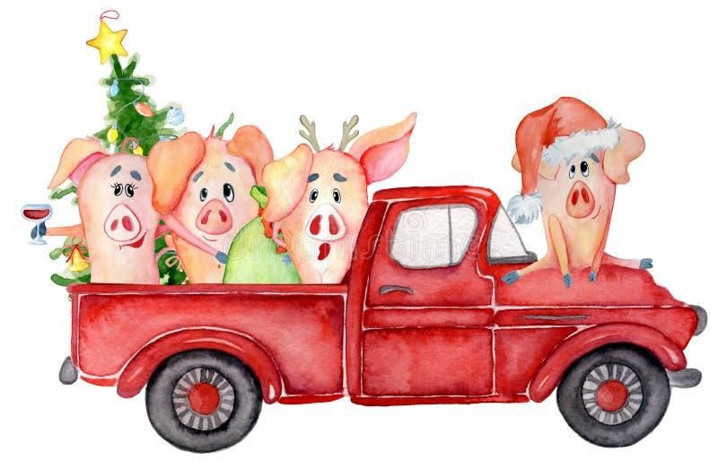 Os porcos bonitos com abóboras colhem a aquarela 2019 tirada mão do molde da ação de graças ilustração stock