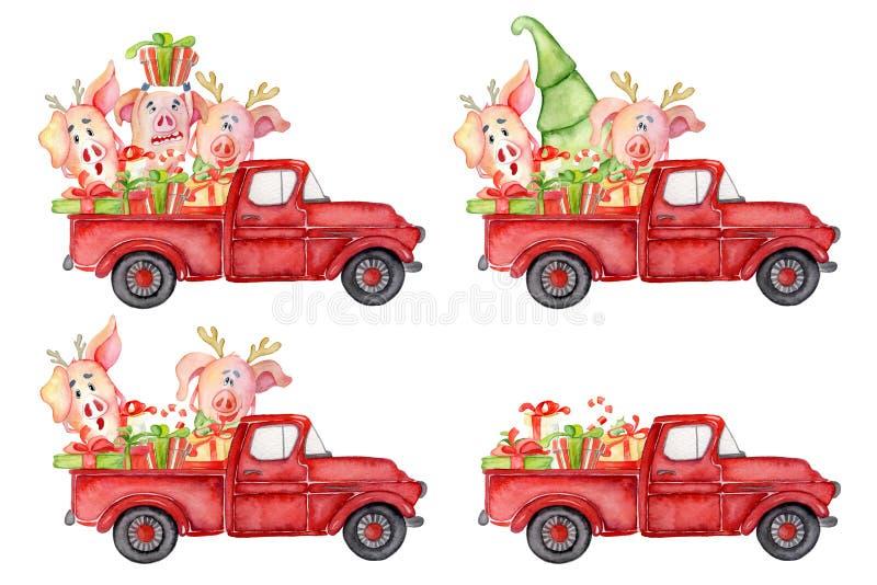 Os porcos bonitos com abóboras colhem a aquarela 2019 tirada mão do molde da ação de graças ilustração royalty free