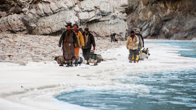 Os porteiros que trekking no inverno arrastam no rio de Zanskar Passeio na montanha de Chadar ladakh India fotos de stock