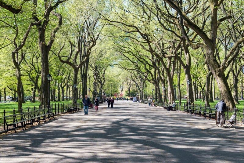 Os povos andam no Central Park no tempo de mola, New York, EUA imagens de stock