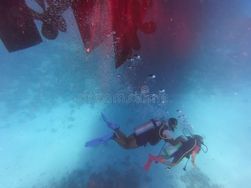 Os povos de mergulho submergem no mar com corais e peixes ao redor, curso para principiantes de águas abertas de mergulhador de m foto de stock