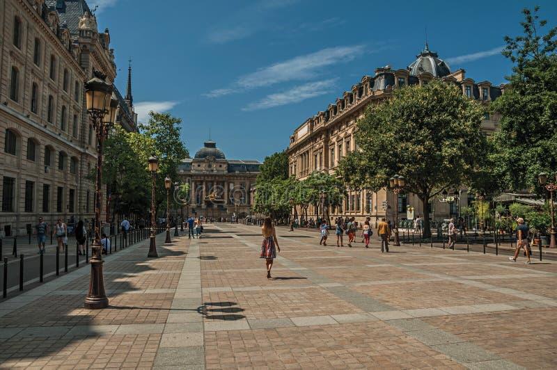 Os povos e as construções no La mencionam a ilha no centro da cidade de Paris imagens de stock royalty free