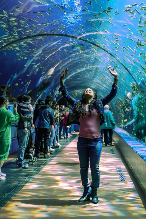 Os povos estão no incrédulo em um túnel do plexiglás que mostra criaturas do mar no aquário EUA de Geórgia com os mergulhadores d fotografia de stock