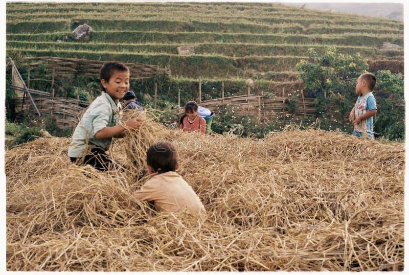 Os povos locais em Ta Van, Sapa, Vietname fotografia de stock