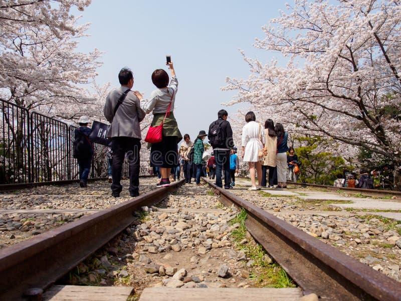 Os povos tomam selfies ao longo das árvores de Sakura e das trilhas de estrada de ferro, declive de Keage, Kyoto, Japão fotos de stock