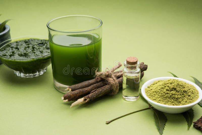 Os produtos do neem de Ayurvedic gostam da pasta, pó, óleo, suco, cuidado do dente imagens de stock