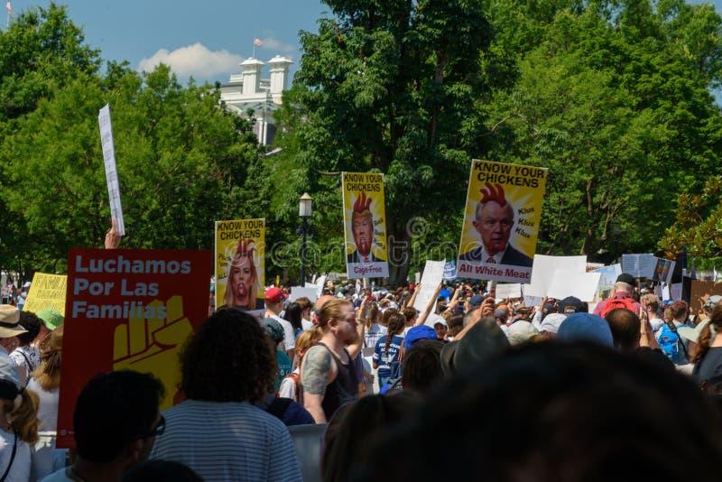 Os Protestors nas famílias pertencem junto reunião imagens de stock