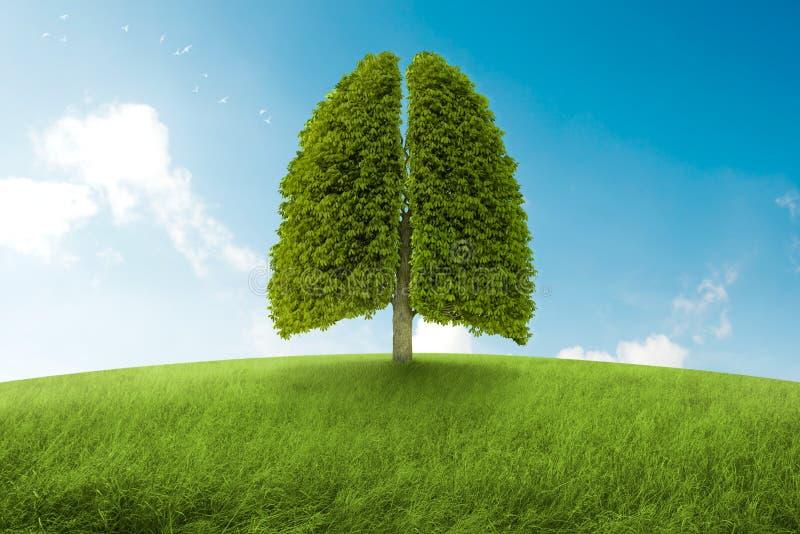 Os pulmões da terra ilustração royalty free