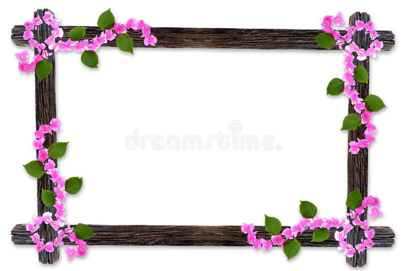 Os quadros de madeira da foto do projeto com ramos da flor da buganvília são ilustração do vetor