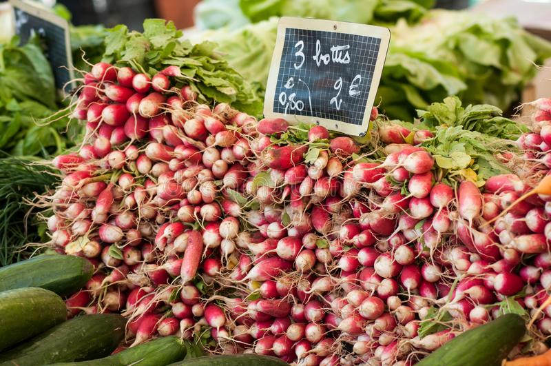 Os rabanetes empilham no mercado fotografia de stock
