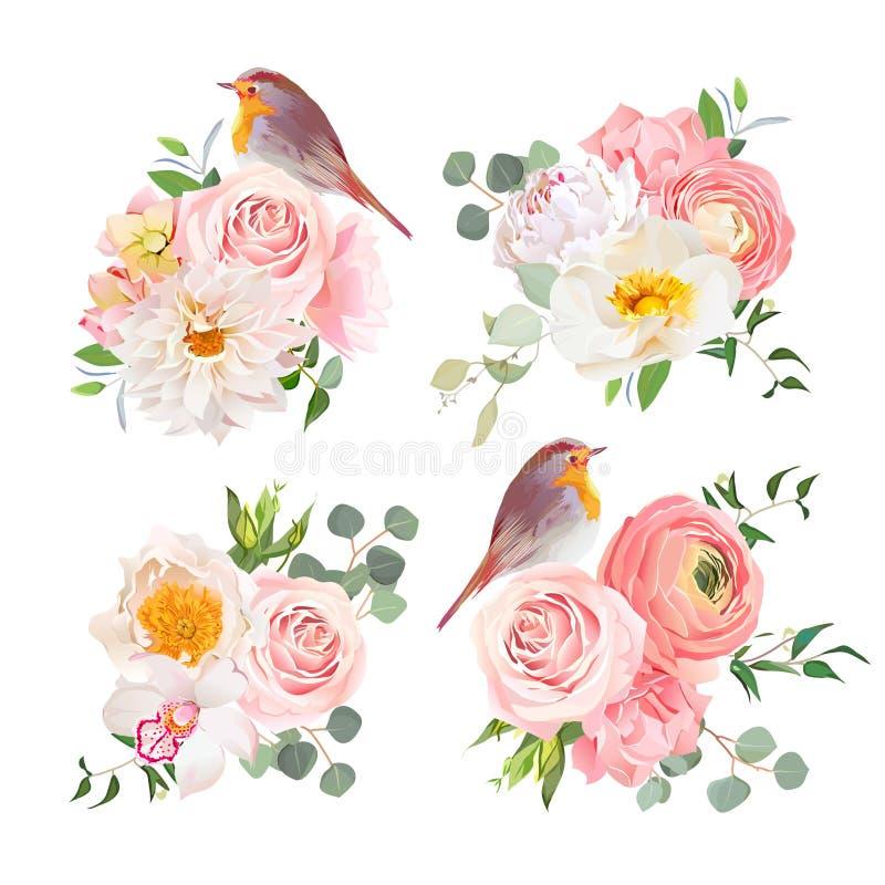 Os ramalhetes coloridos da mola e o vetor bonito dos pássaros do pisco de peito vermelho projetam objetos ilustração royalty free