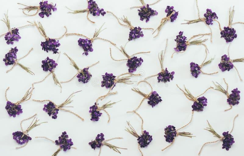 Os ramalhetes pequenos da floresta perfumada florescem o fundo do branco das violetas foto de stock