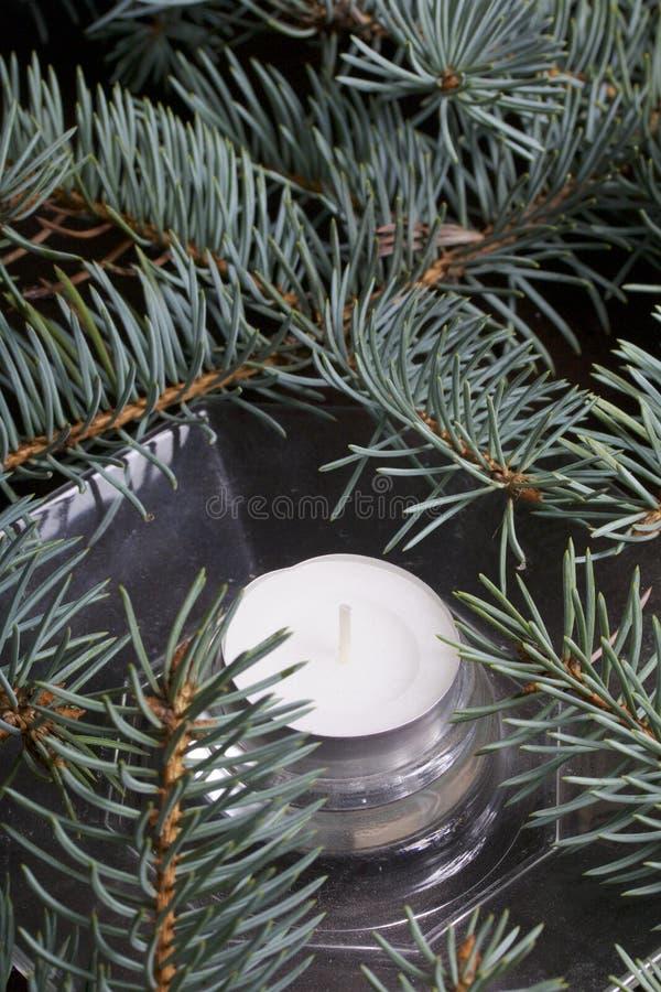 Os ramos da mentira spruce azul no plano Entre eles, uma vela em um castiçal de vidro imagens de stock royalty free