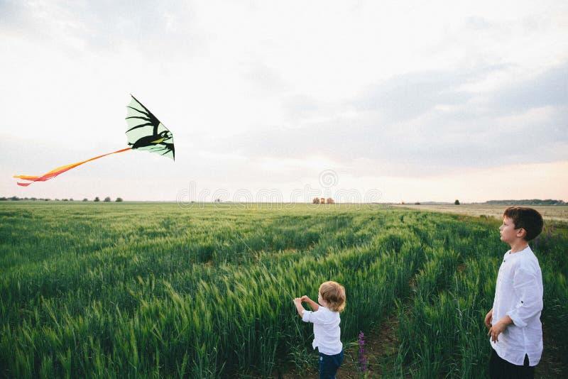 Os rapazes pequenos que lançam um papagaio no trigo arquivaram Dois irm?os fotos de stock royalty free