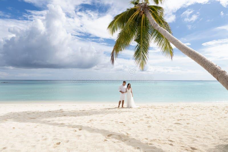 Os recém-casados abraçam sob uma palmeira em uma praia lindo com água branca da areia e da turquesa fotografia de stock