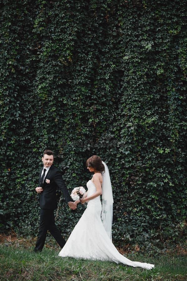 Os recém-casados atrativos dos pares estão andando para trás em uma fuga noivos que abraçam no jardim de florescência da mola fotos de stock royalty free